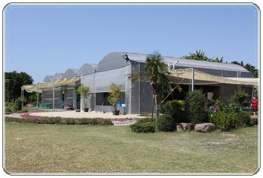 沐卉農場 (89)