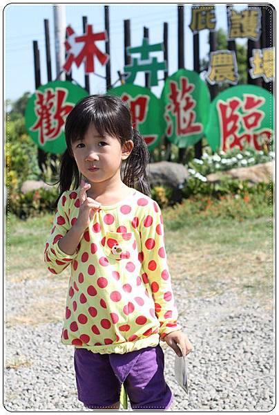 沐卉農場 (90)