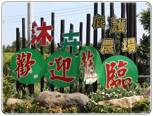沐卉農場 (91)