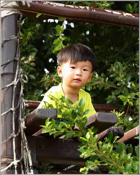 沐卉農場 (28)