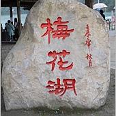 梅花湖 (36)