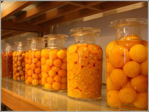 橘之鄉 (14)