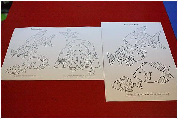 彩虹魚 (2).jpg