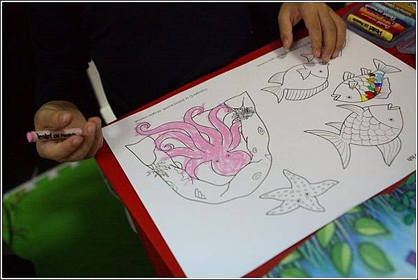 彩虹魚 (4)