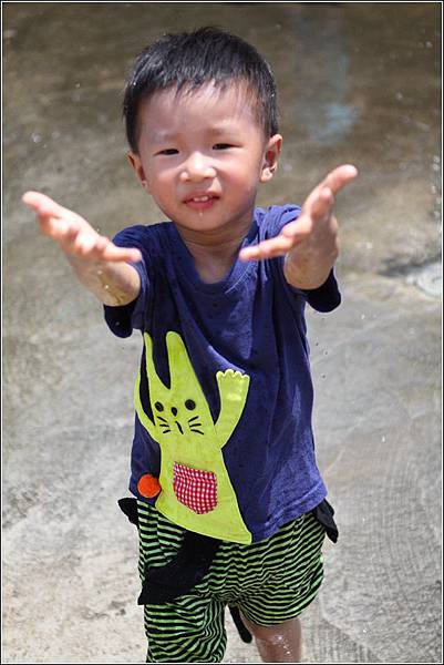 台灣水牛城 (37)