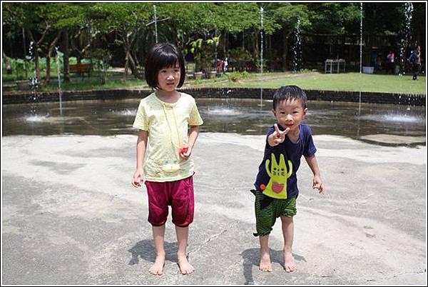 台灣水牛城 (41)