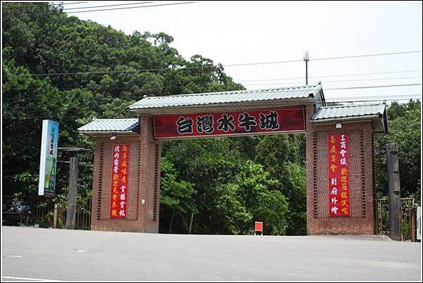 台灣水牛城 (46)
