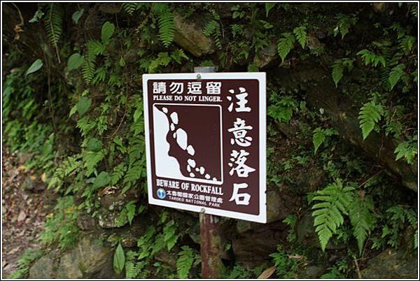 砂卡礑步道 (40)