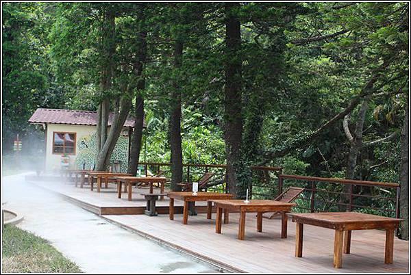 森林鳥花園 (13)