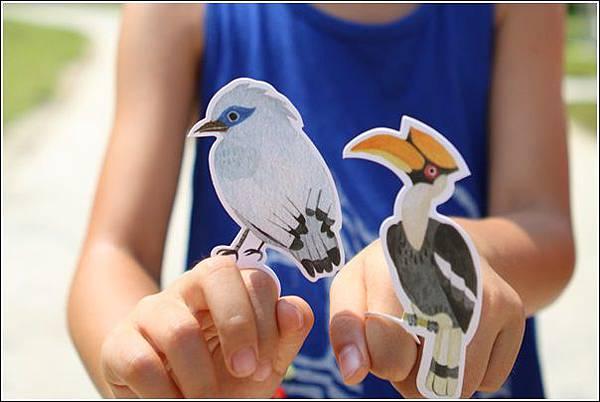 森林鳥花園 (19)