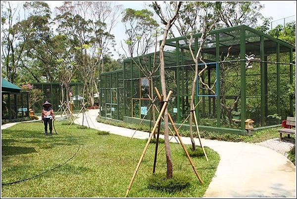森林鳥花園 (31)