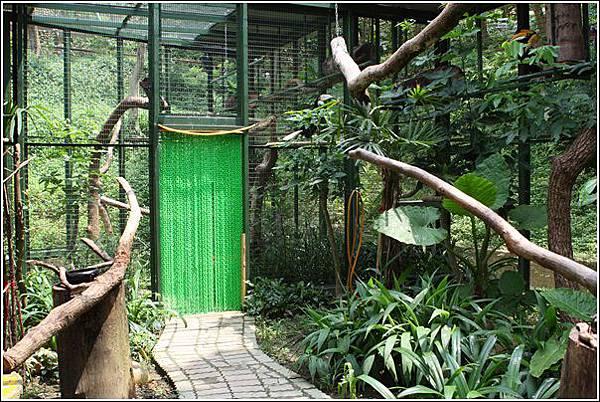 森林鳥花園 (40)