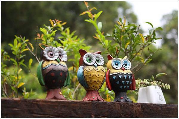森林鳥花園 (56)