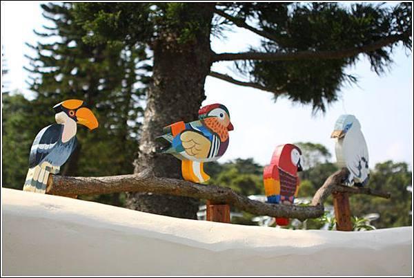 森林鳥花園 (103)