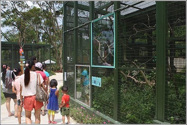 森林鳥花園 (106)