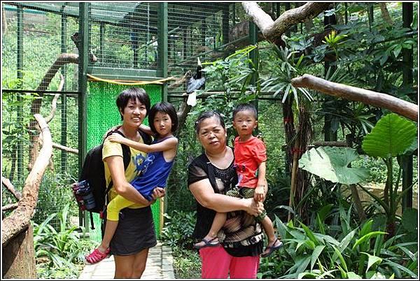 森林鳥花園 (15)