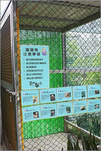森林鳥花園 (104)