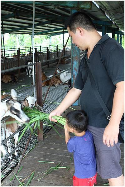 宜農牧場 (45)