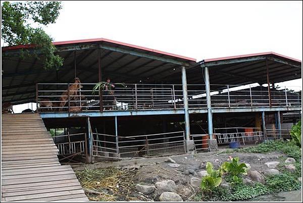 宜農牧場 (50)