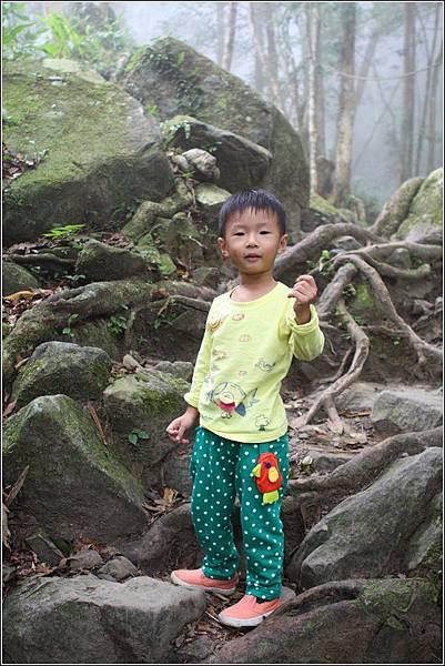 馬武督探索森林 (36)