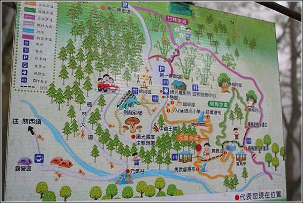 馬武督探索森林 (37)