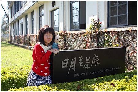 日月老茶廠 (4)