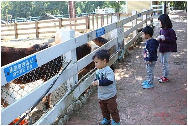 大溪花海農場 (43)