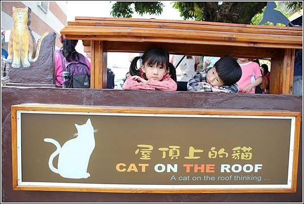 屋頂上的貓 (20)