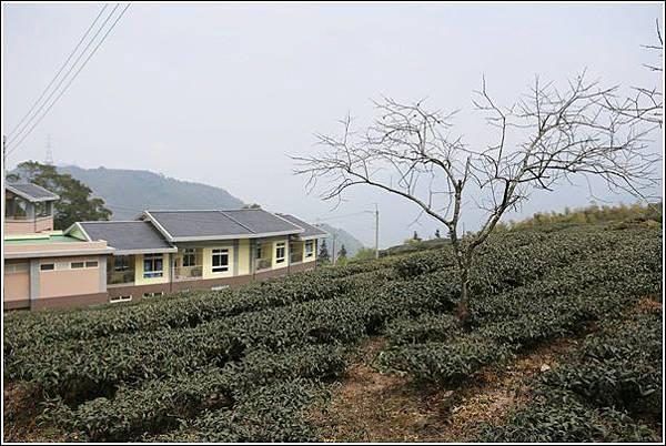 樟湖生態國民中小學 (32)