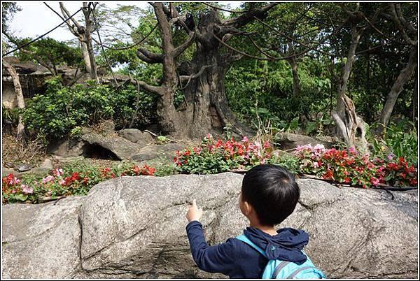 台北市動物園 (4)