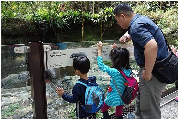 台北市動物園 (12)