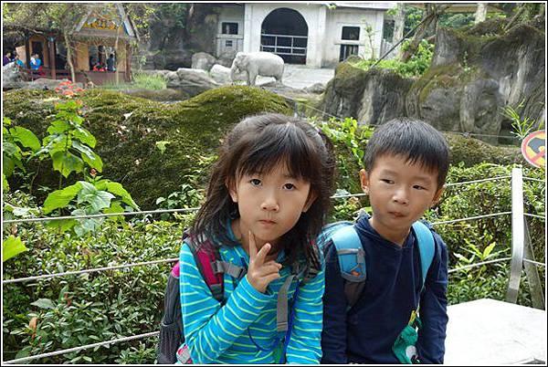 台北市動物園 (17)