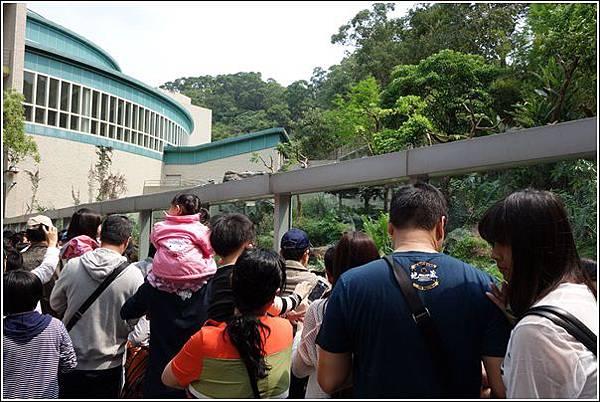 台北市動物園 (23)