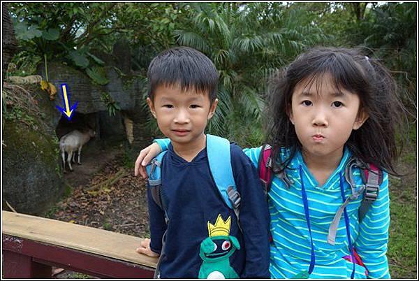 台北市動物園 (33)