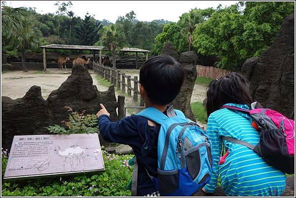 台北市動物園 (35)