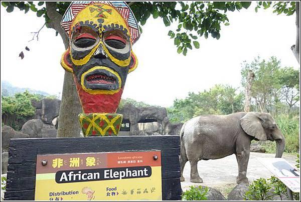 台北市動物園 (47)