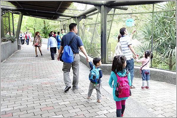 台北市動物園 (49)