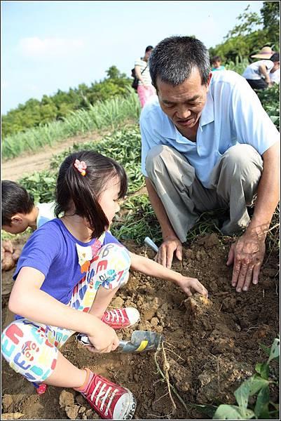 奇美農場挖地瓜 (43)