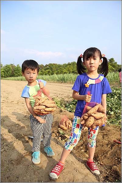 奇美農場挖地瓜 (47)