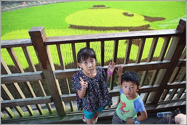 彩繪稻田 (7)