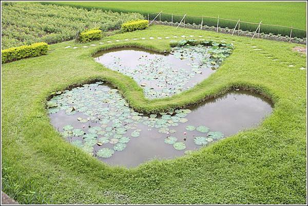 雙心生態池 (3)