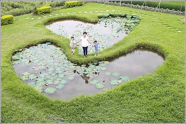 雙心生態池 (4)
