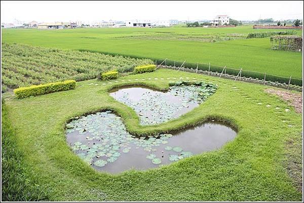 雙心生態池 (11)