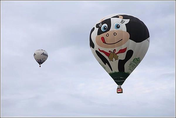 熱氣球嘉年華 (23)