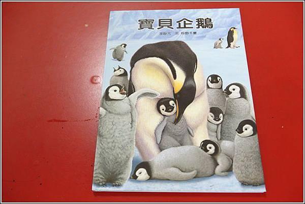 寶貝企鵝 (6)
