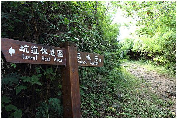 龜山 (10)