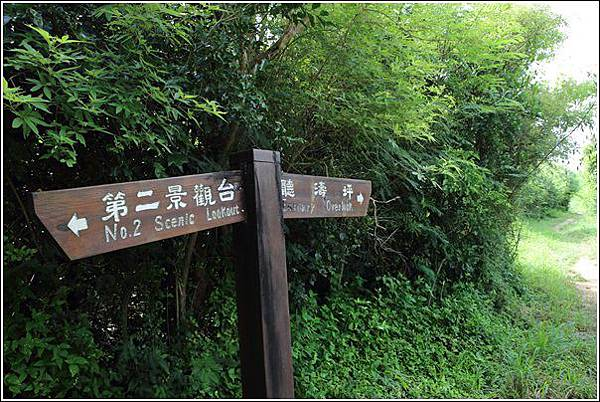 龜山 (11)