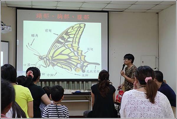 彩蝶飛舞親子趣 (5)