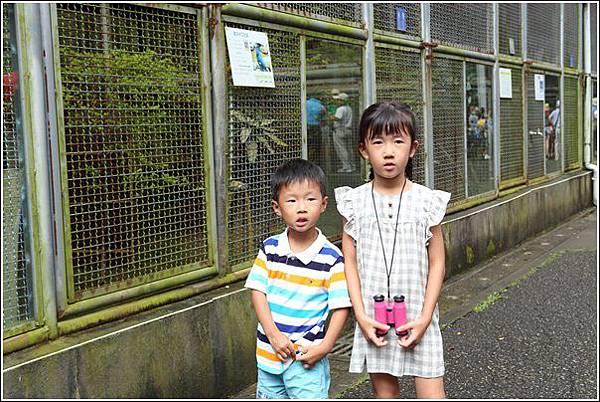 彩蝶飛舞親子趣 (55)