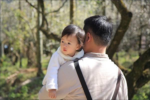 父與子 (4)